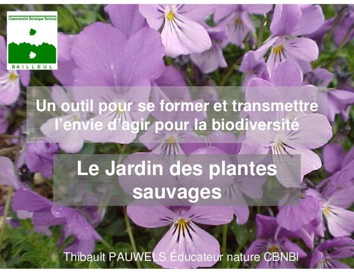 Un outil pour se former et transmettre  l'envie d'agir pour la biodiversité     Le Jardin des plantes           sauvages  ...