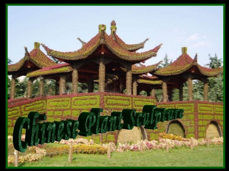 Chinese Plant Sculpture 中國树雕