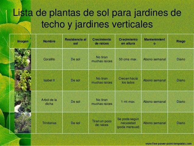 Jardines de techo - Plantas de sol directo ...