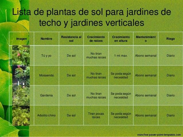 Jardines de techo for Tipos de plantas para jardin