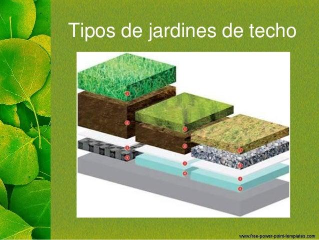 Jardines de techo for Tipos de techos desmontables