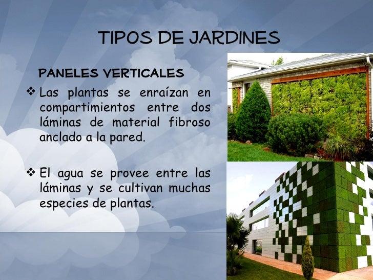 Jardines de techos Tipos de plantas para jardines verticales