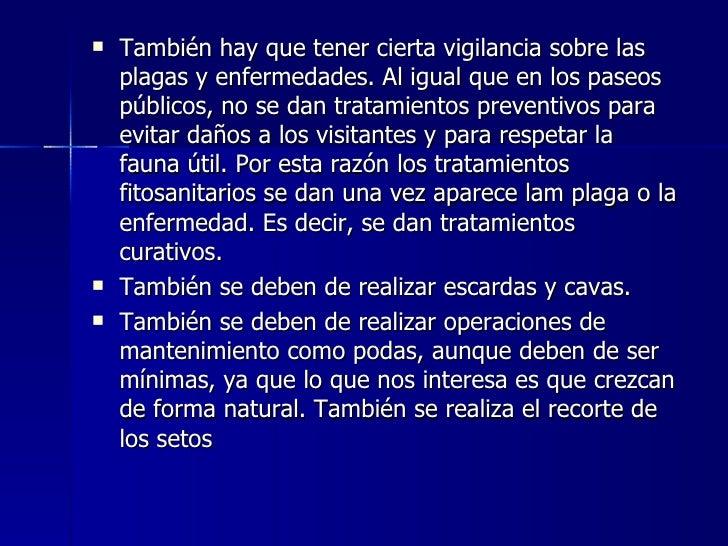 <ul><li>También hay que tener cierta vigilancia sobre las plagas y enfermedades. Al igual que en los paseos públicos, no s...
