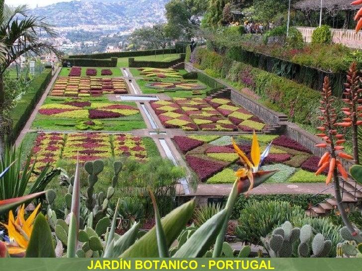 Jardines y parques del mundo for Parques y jardines