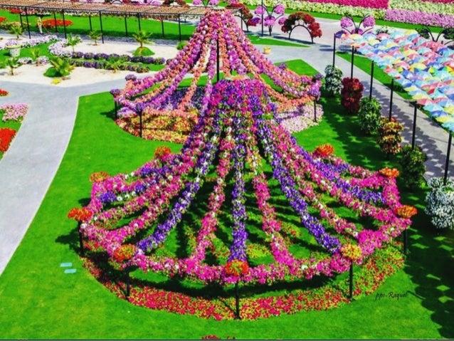 Jardin milagro dubai - Paisajes de jardines ...