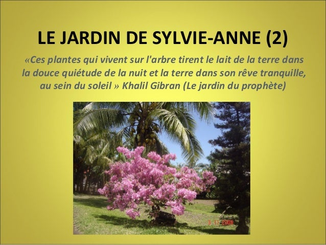 LE JARDIN DE SYLVIE-ANNE (2) «Ces plantes qui vivent sur l'arbre tirent le lait de la terre dans la douce quiétude de la n...