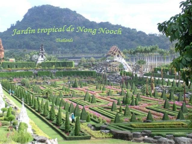 Jardin tropical de nong nooch en tha lande for Jardin tropical
