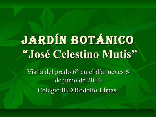 """Jardín botánicoJardín botánico """"""""José Celestino Mutis""""José Celestino Mutis"""" Visita del grado 6° en el día jueves 6Visita d..."""