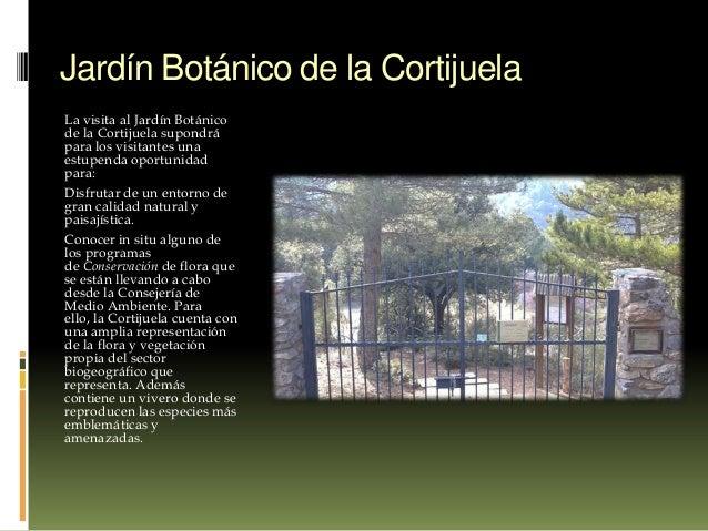 Jard n bot nico de la cortijuela granada spain for Jardin botanico de granada