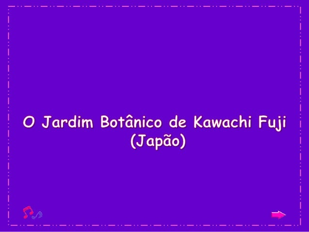 Este lugar é conhecido como o Jardim Kawachi Fuji e se encontra localizado na cidade japonesa de Kitakyushu. Sua aparência...