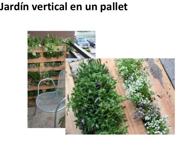 Jardín vertical en un pallet