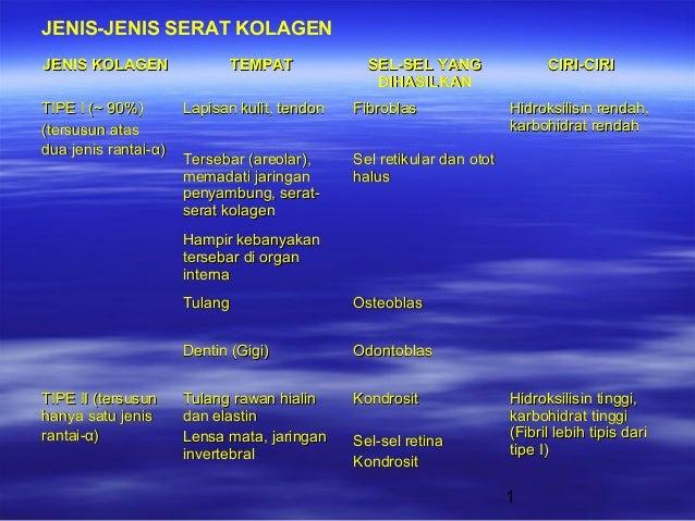 1 JENIS KOLAGENJENIS KOLAGEN TEMPATTEMPAT SEL-SEL YANGSEL-SEL YANG DIHASILKANDIHASILKAN CIRI-CIRICIRI-CIRI TIPE I (TIPE I ...