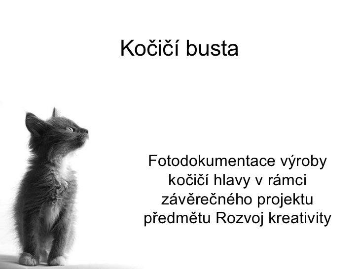 Kočičí busta  Fotodokumentace výroby     kočičí hlavy v rámci    závěrečného projektu  předmětu Rozvoj kreativity