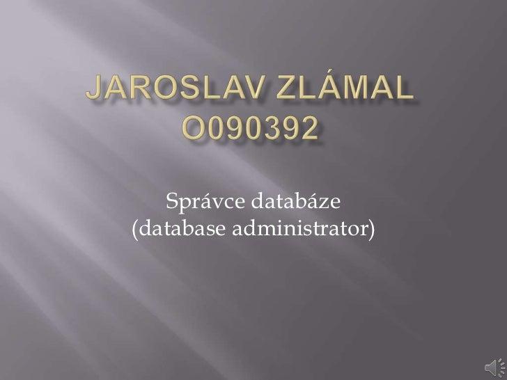 Správce databáze(database administrator)