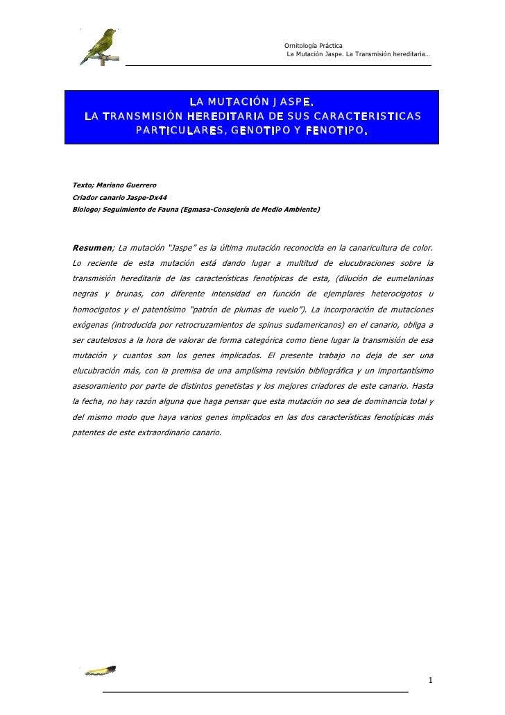 Ornitología Práctica                                                          La Mutación Jaspe. La Transmisión hereditari...