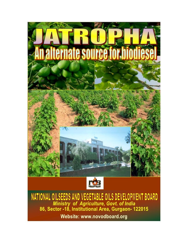 Ministry of Agriculture, Govt. of India86, Sector -18, Institutional Area, Gurgaon- 122015          Website: www.novodboar...