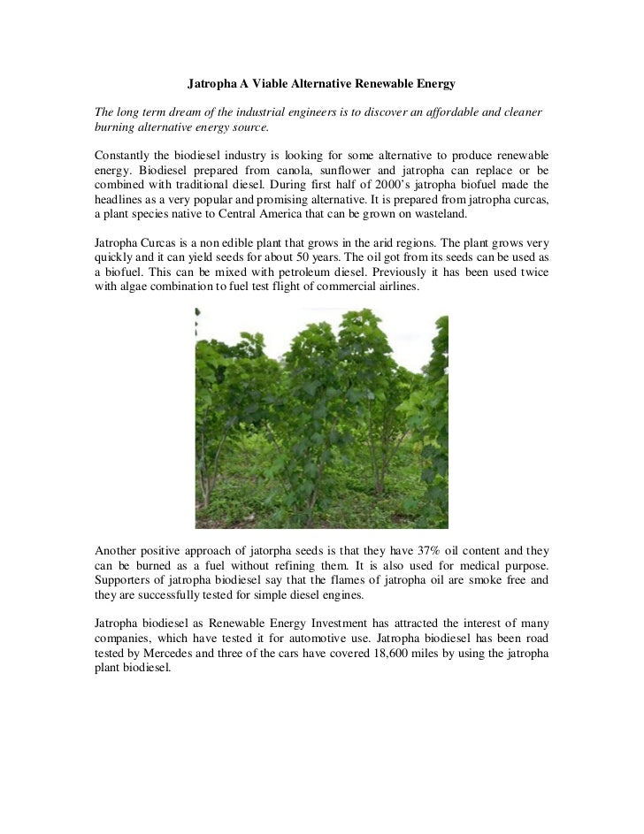 Jatropha A Viable Alternative Renewable EnergyThe long term dream of the industrial engineers is to discover an affordable...