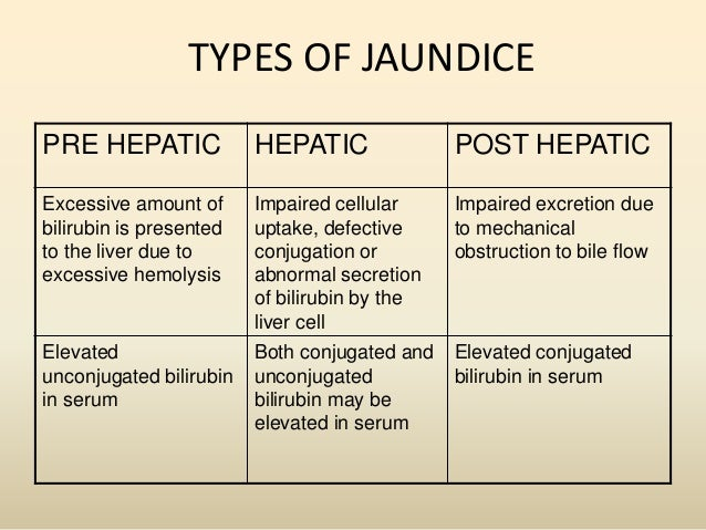 All About Jaundice