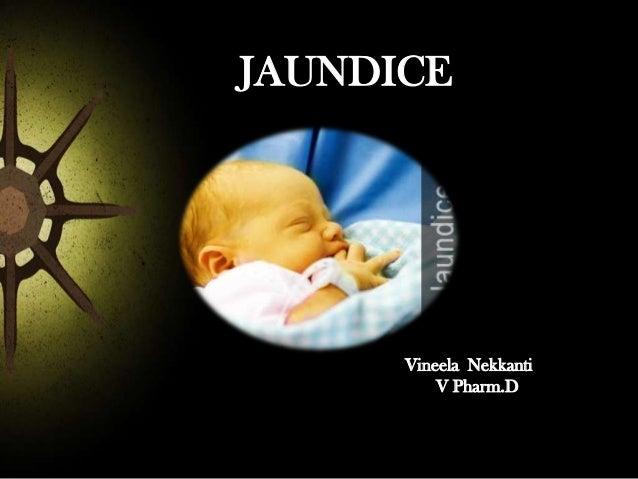 JAUNDICE  Vineela Nekkanti V Pharm.D