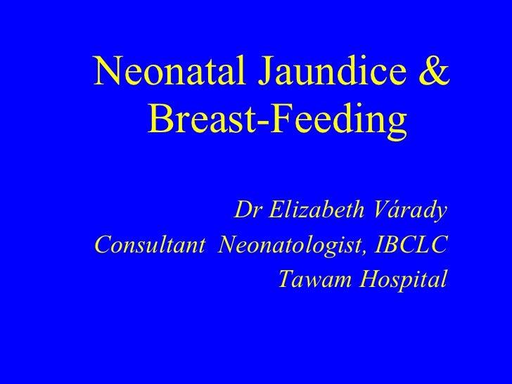 Neonatal Jaundice &  Breast-Feeding Dr Elizabeth V á rady Consultant  Neonatologist, IBCLC Tawam Hospital