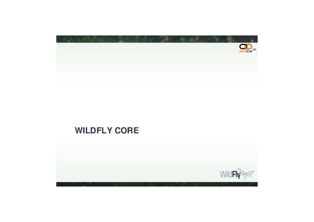 JavaCro'14 - Using WildFly core to build high performance