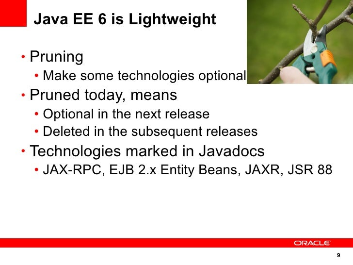 Java EE 6 is Lightweight  • Pruning    • Make some technologies optional • Pruned today, means    • Optional in the next r...