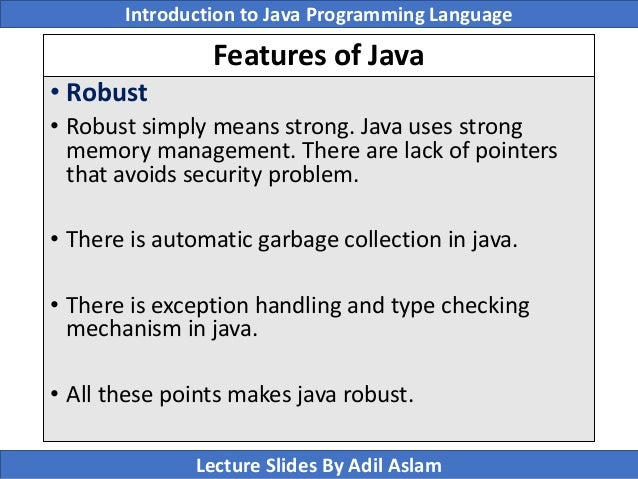 Introduction To Java Programming Lecture No 1 - robust definition java