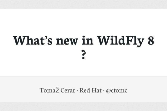 Javantura Zagreb 2014 - WildFly 8 - Tomaž Cerar