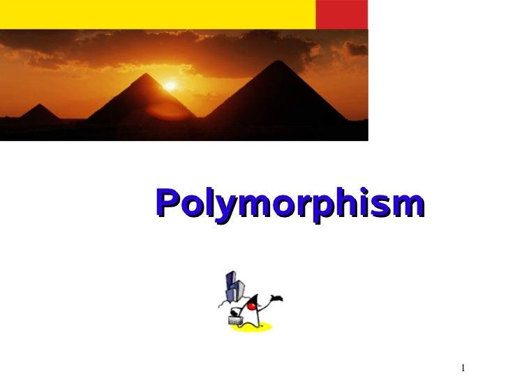 Polymorphism               1