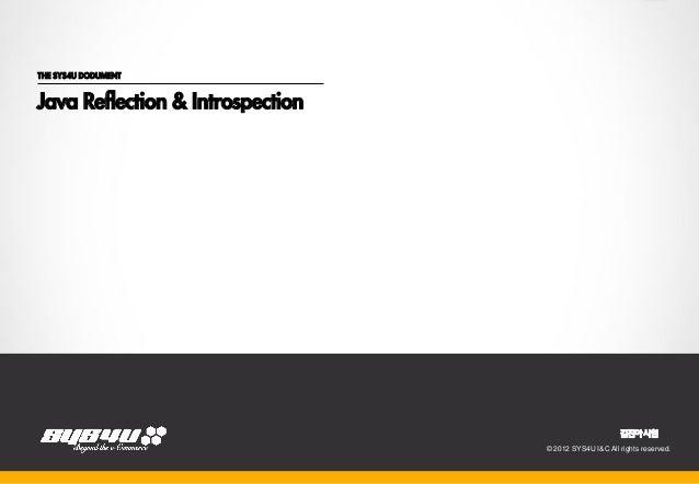 THE SYS4U DODUMENTJava Reflection & Introspection                                  2012.08.21                             ...