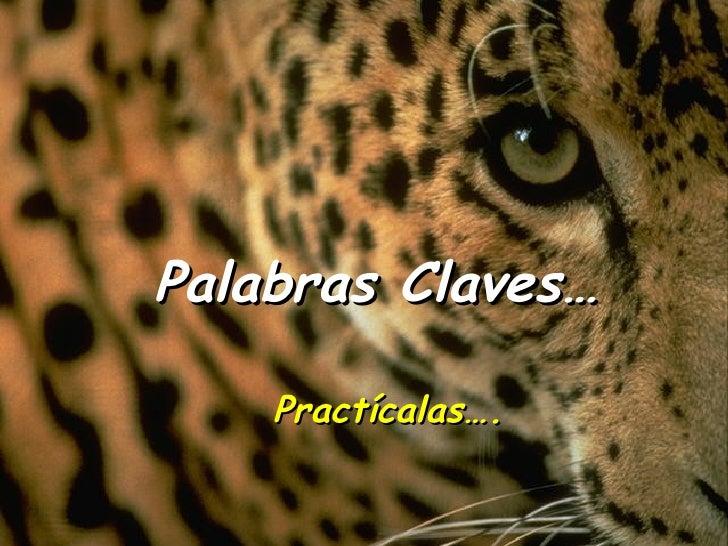 Palabras Claves… Practícalas….