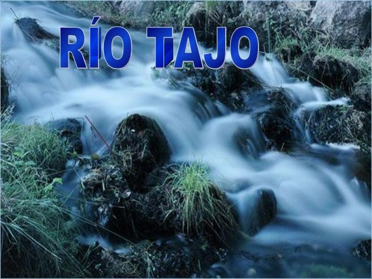 •   El tajo esta situado en la vertiente Atlántica.•   Es el río más largo de todo España con una longitud de 1.007 kilóme...