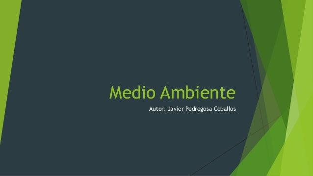 Medio Ambiente Autor: Javier Pedregosa Ceballos