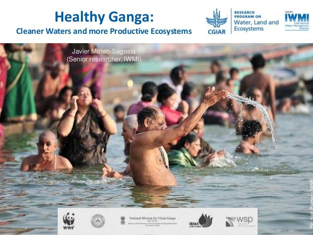 Healthy Ganga: Cleaner Waters and more Productive Ecosystems Javier Mateo-Sagasta (Senior researcher, IWMI)
