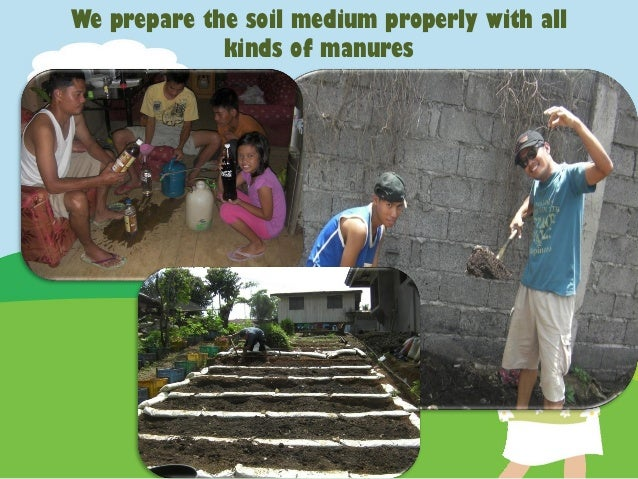 Jaya 39 S Secret Garden Innovation And Agripreneurial: my secret garden bay city