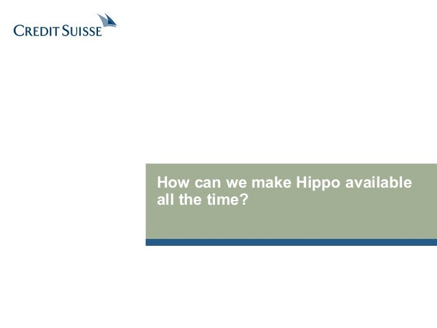 How can we make Hippo available  all the time?