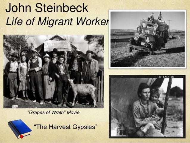 harvest gypsies steinbeck essay John steinbeck - the harvest gypsies - free download as pdf file (pdf), text file (txt) or read online for free.