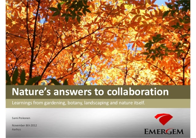 Nature's answers to collaborationLearnings from gardening, botany, landscaping and nature itself.Sami PoikonenNovember 8th...