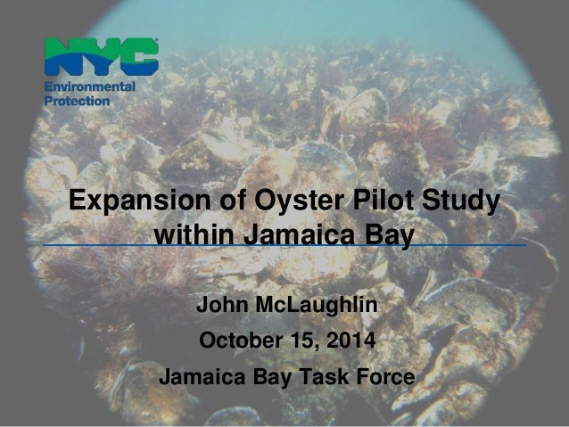 Expansion of Oyster Pilot Study  within Jamaica Bay  John McLaughlin  October 15, 2014  Jamaica Bay Task Force