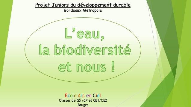 École Arc en Ciel Classes de GS /CP et CE1/CE2 Bruges Projet Juniors du développement durable Bordeaux Métropole