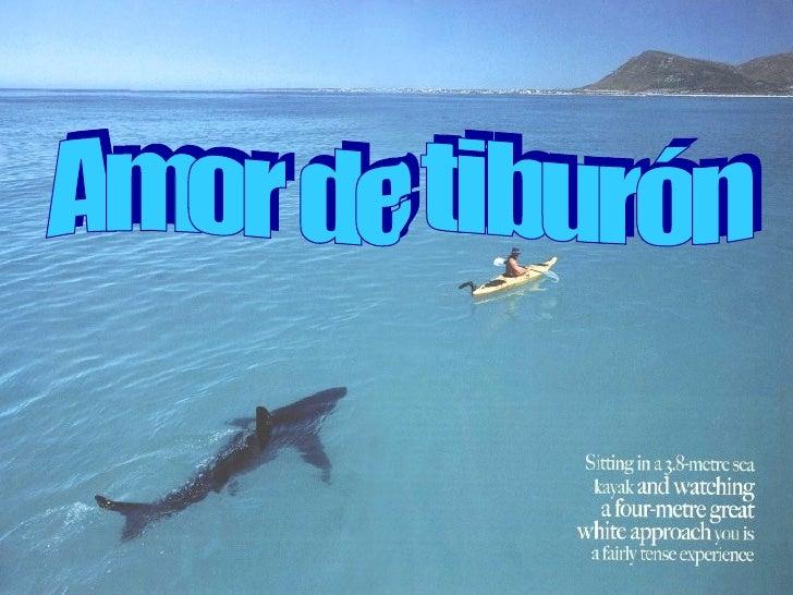 Amor de tiburón