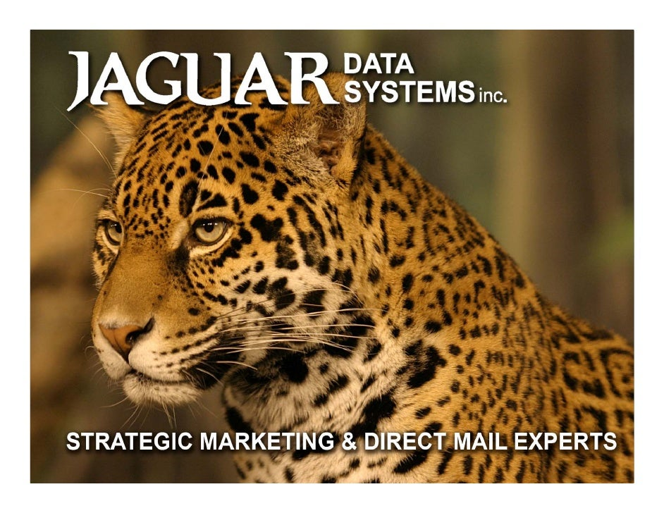 Who we are…     Jaguar Data Systems Inc. is a leading business partner in strategic marketing and direct mail services. Ut...