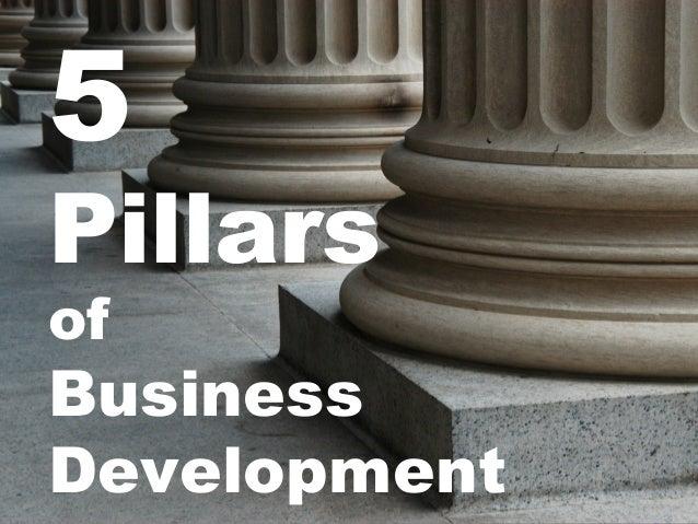 5 Pillars of Business Development