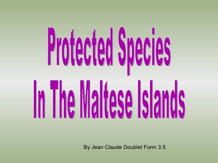Protected Species  In The Maltese Islands By Jean Claude Doublet Form 3.5