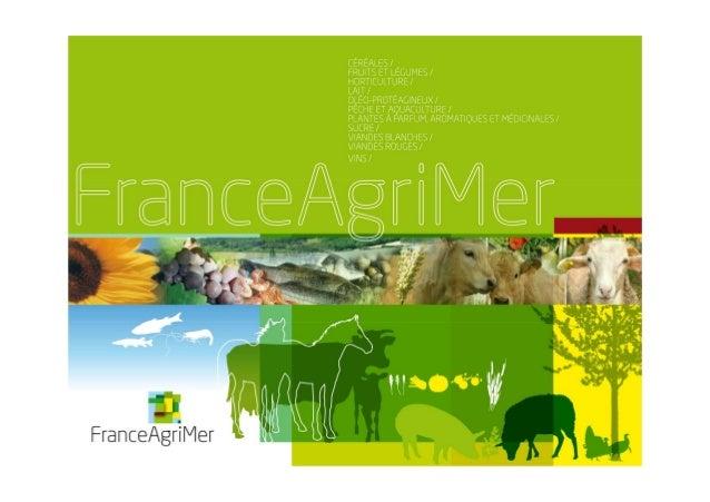 Le marché mondial des huiles végétales 16 juin 2011 Communauté de commune du Mené