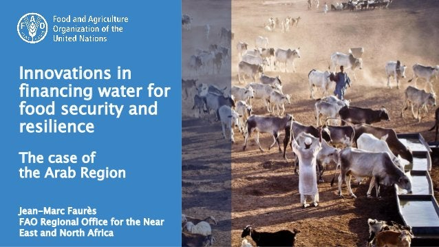 Jean-Marc Faurès FAO Regional Office for the Near East and North Africa Innovations in financing water for food security a...
