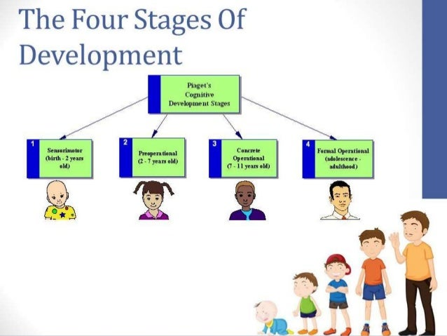"""jean piaget the four stages of cognitive theory •establish new fields of scientific study and theories- including cognitive  • piaget theory involved four stages of mental development, he called this """"schema ."""