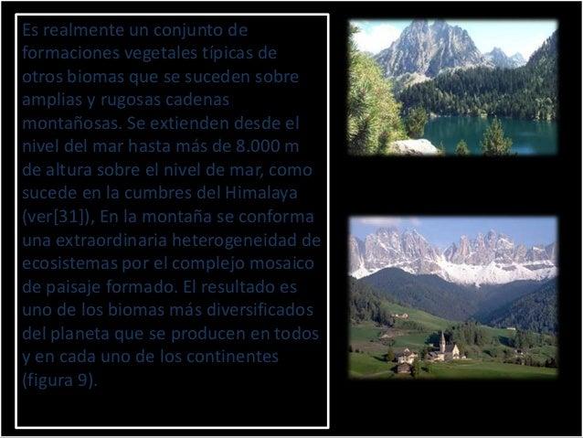 Falsamente se asocia el biomade montaña (Alpina bioma, eninglés) únicamente con cumbresaltas, cubiertas por nieve yazotada...