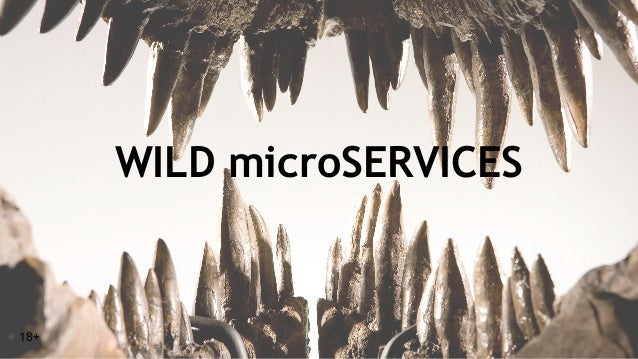 WILD microSERVICES 18+