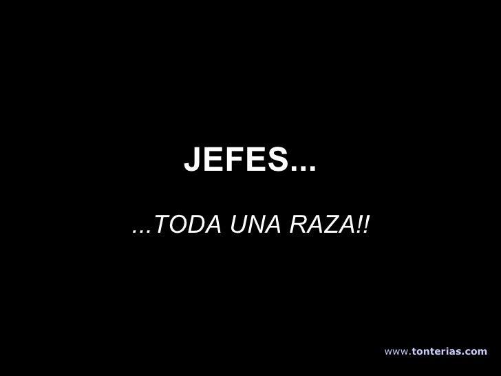 JEFES... ...TODA UNA RAZA!! www . tonterias . com